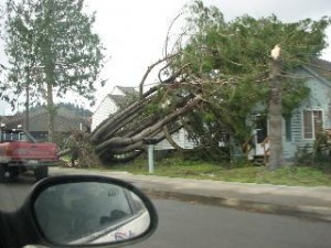 wind insurance coverage
